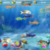 Review Game Dream Fishing - Pop Fishing Fun